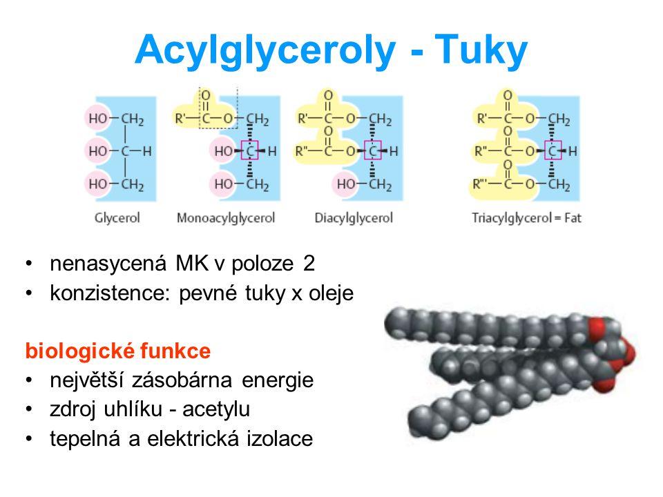Acylglyceroly - Tuky nenasycená MK v poloze 2 konzistence: pevné tuky x oleje biologické funkce největší zásobárna energie zdroj uhlíku - acetylu tepe