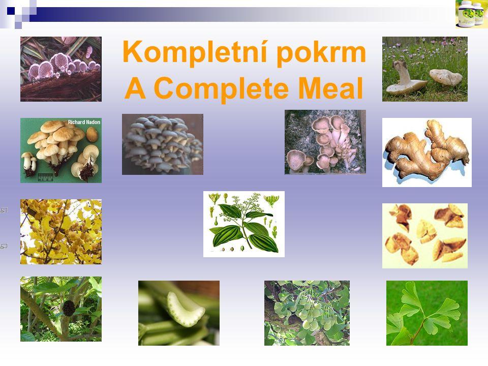 A Complete Meal Kompletní pokrm
