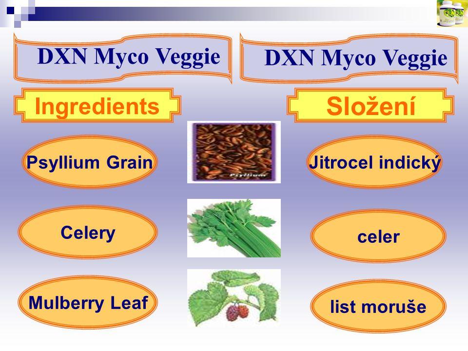 Jitrocel indickýPsyllium Grain Mulberry Leaf Ingredients Složení Celery celer list moruše DXN Myco Veggie