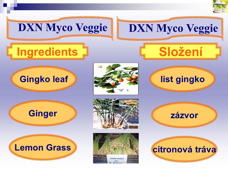list gingkoGingko leaf Lemon Grass Ingredients Složení Ginger zázvor citronová tráva DXN Myco Veggie