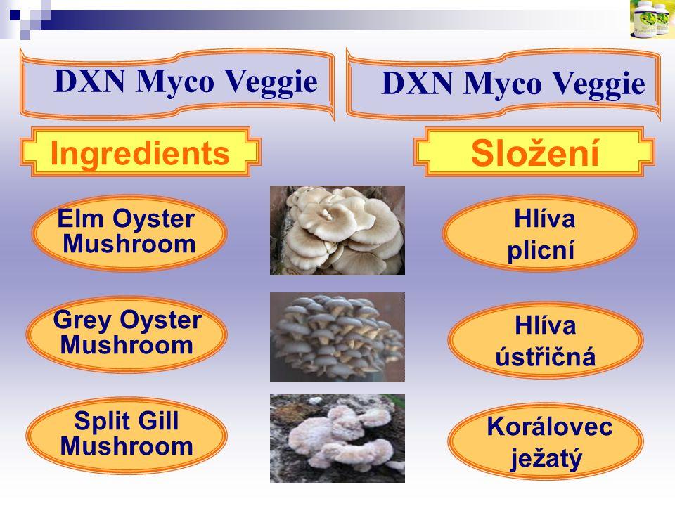 Hlíva plicní Elm Oyster Mushroom Split Gill Mushroom Ingredients Složení Grey Oyster Mushroom Hlíva ústřičná Korálovec ježatý DXN Myco Veggie