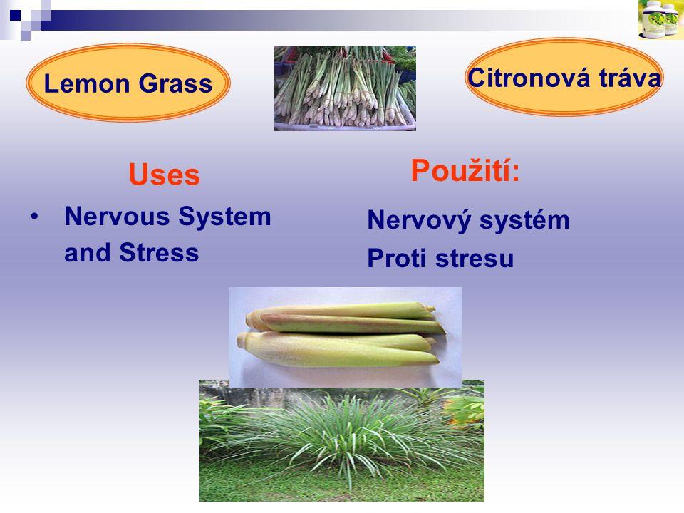 Použití: Uses Nervous System and Stress Nervový systém Proti stresu Lemon Grass Citronová tráva
