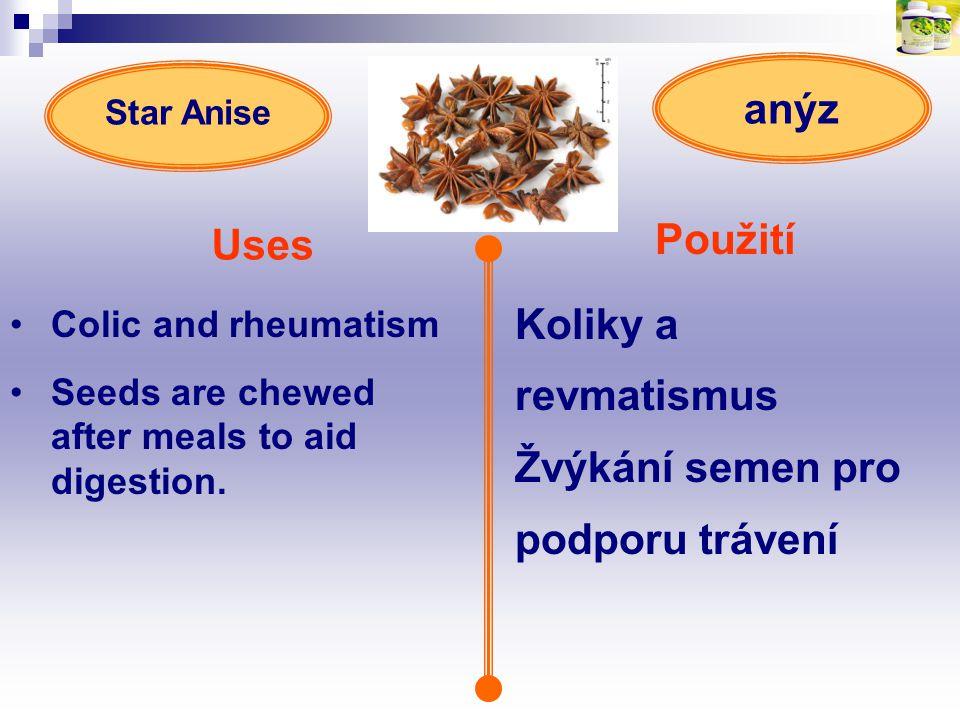 Použití Uses Koliky a revmatismus Žvýkání semen pro podporu trávení anýz Colic and rheumatism Seeds are chewed after meals to aid digestion. Star Anis