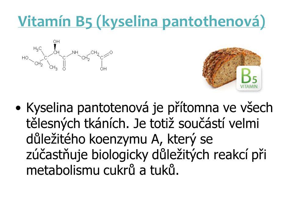 Vitamín B5 (kyselina pantothenová) Kyselina pantotenová je přítomna ve všech tělesných tkáních. Je totiž součástí velmi důležitého koenzymu A, který s