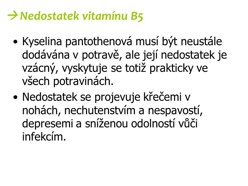  Nedostatek vitamínu B5 Kyselina pantothenová musí být neustále dodávána v potravě, ale její nedostatek je vzácný, vyskytuje se totiž prakticky ve vš