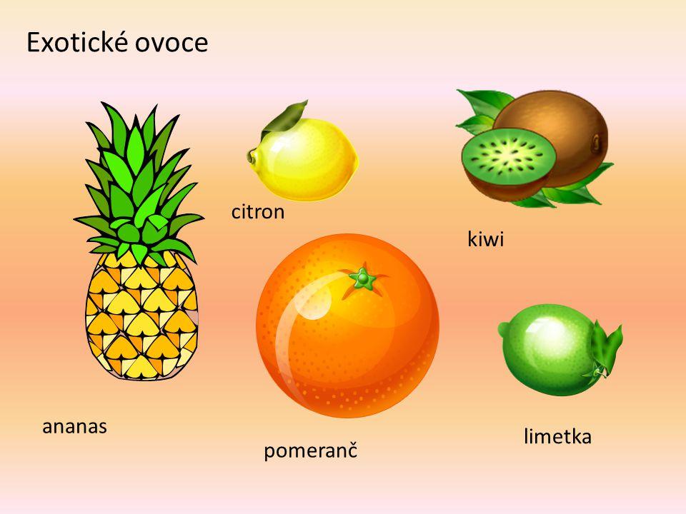 Exotické ovoce ananas pomeranč citron kiwi limetka