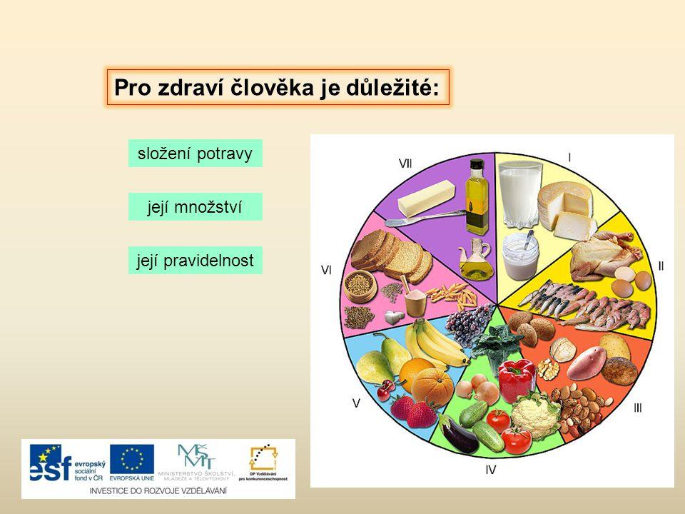 Pro zdraví člověka je důležité: složení potravy její množství její pravidelnost