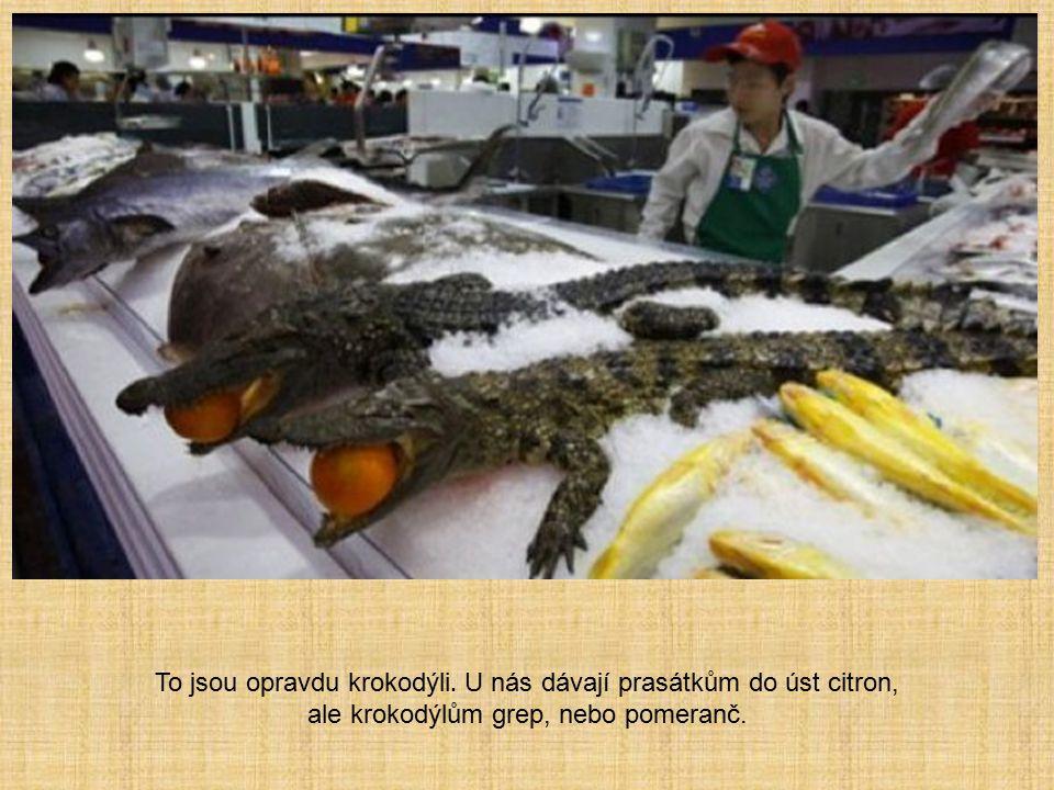 To jsou opravdu krokodýli. U nás dávají prasátkům do úst citron, ale krokodýlům grep, nebo pomeranč.