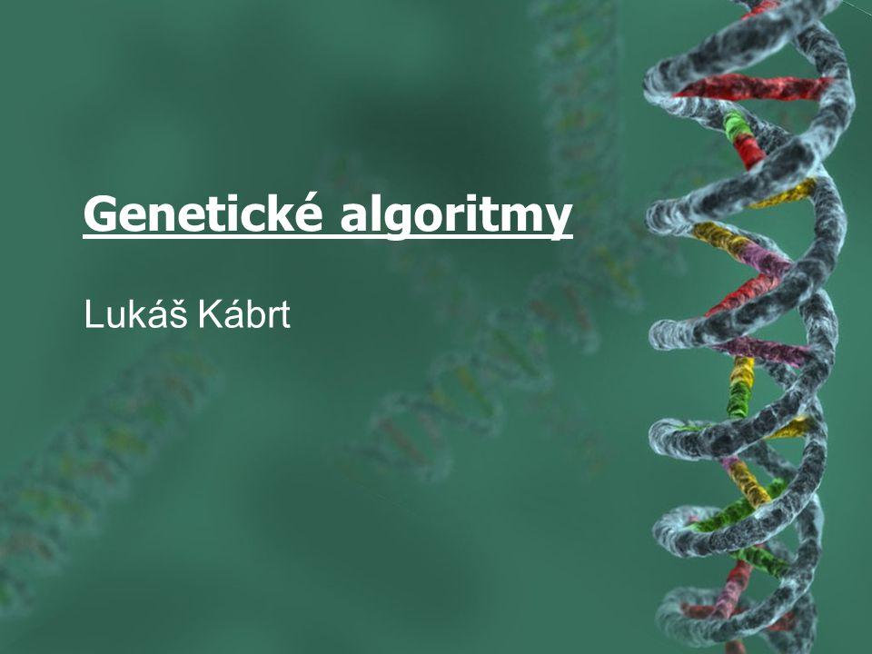 Genetické algoritmy Lukáš Kábrt