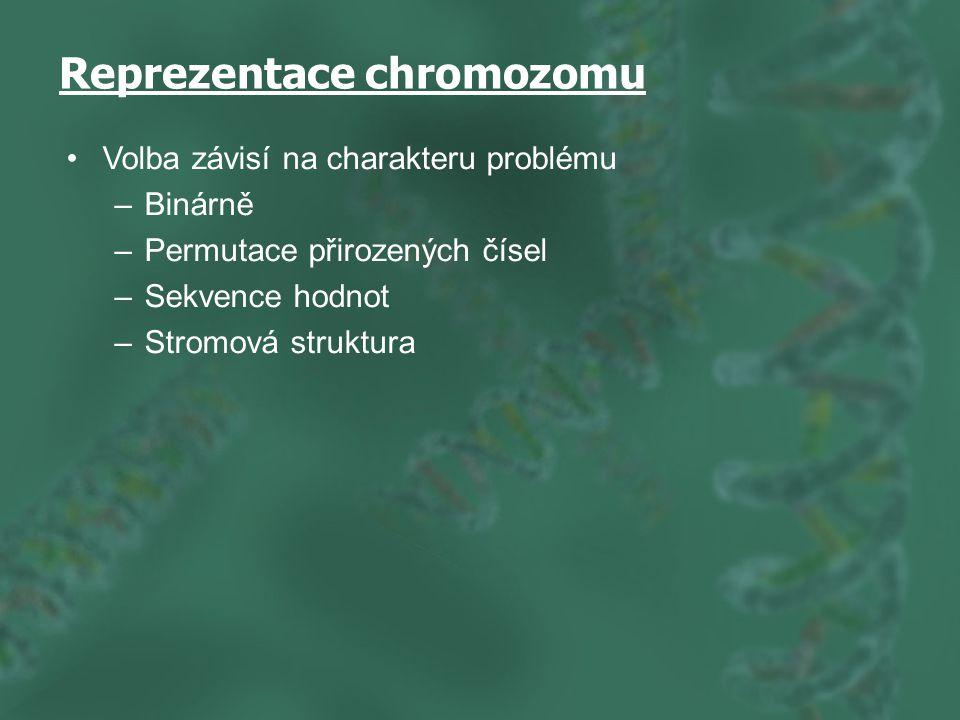 Reprezentace chromozomu Volba závisí na charakteru problému –Binárně –Permutace přirozených čísel –Sekvence hodnot –Stromová struktura