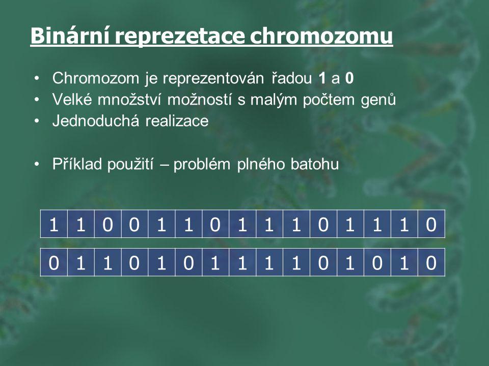Binární reprezetace chromozomu Chromozom je reprezentován řadou 1 a 0 Velké množství možností s malým počtem genů Jednoduchá realizace Příklad použití – problém plného batohu 110011011101110 011010111101010