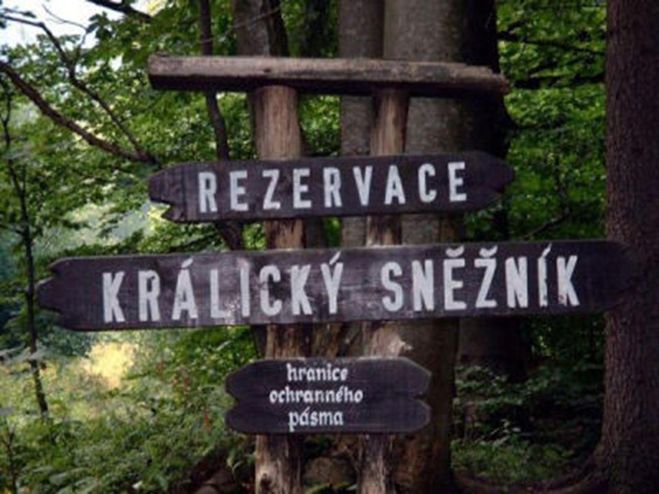 Povrch Nejnižší nadmořskou výšku má místo, kde u Kojic řeka Labe opouští území kraje (200 m n.m).