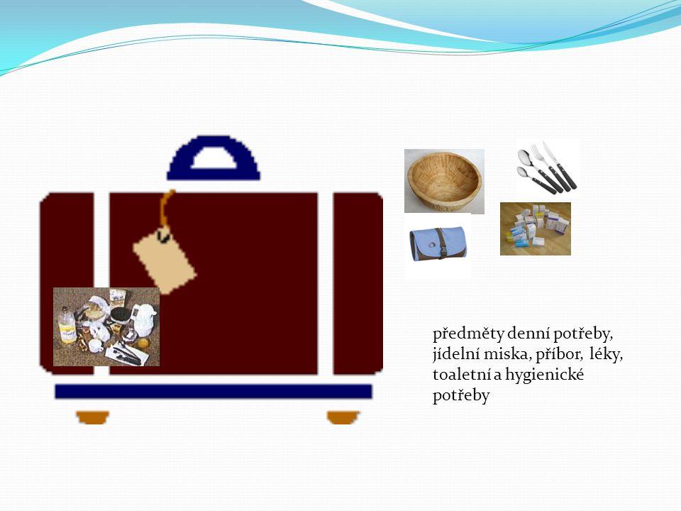 předměty denní potřeby, jídelní miska, příbor, léky, toaletní a hygienické potřeby