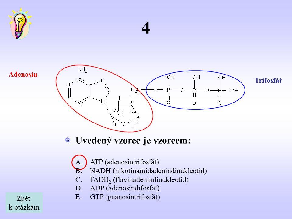 5 Mezi 20 základních α-aminokyselin (tzv.kódovaných) nepatří: Jedná se o β-aminokyselinu.