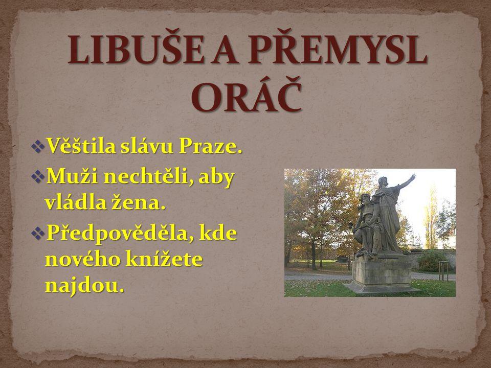  Věštila slávu Praze.  Muži nechtěli, aby vládla žena.  Předpověděla, kde nového knížete najdou.