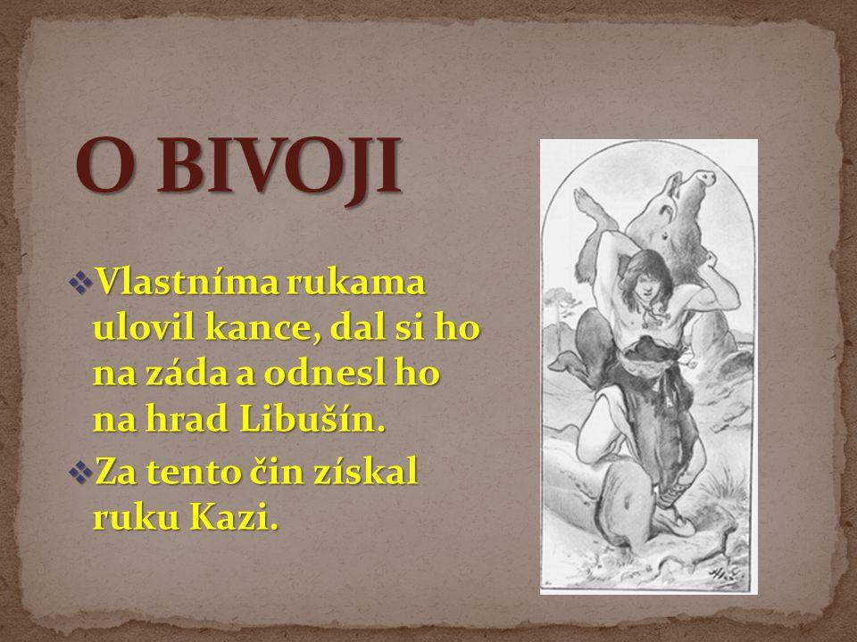  Vlastníma rukama ulovil kance, dal si ho na záda a odnesl ho na hrad Libušín.  Za tento čin získal ruku Kazi.