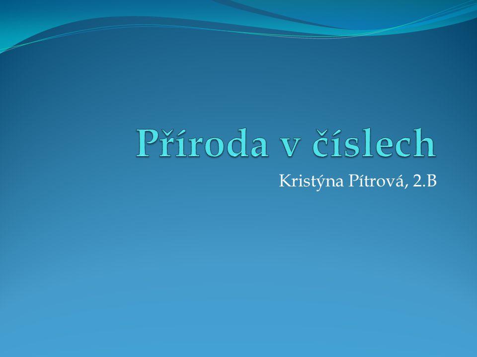 Kristýna Pítrová, 2.B