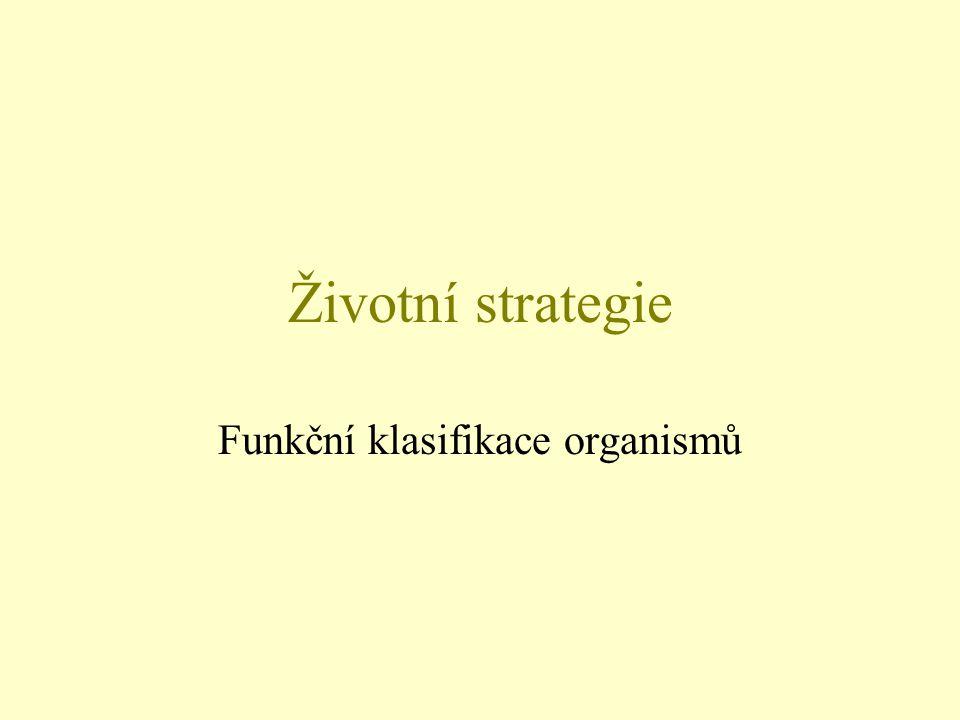 Životní strategie Funkční klasifikace organismů