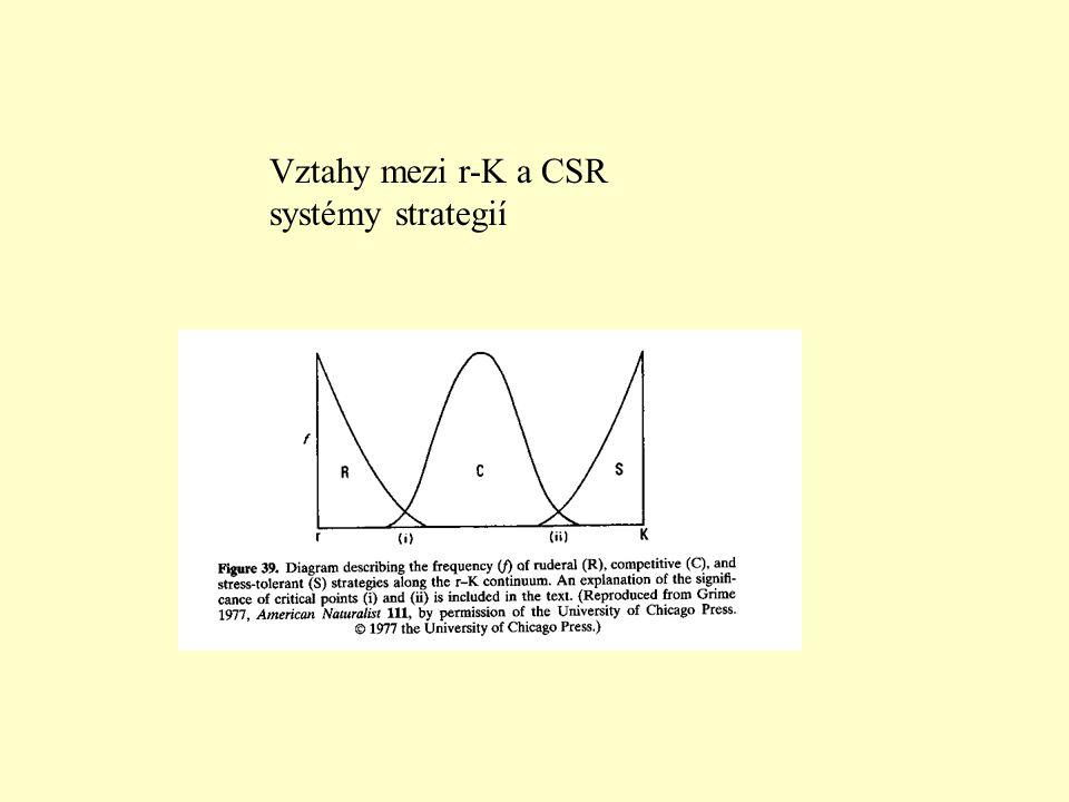 Vztahy mezi r-K a CSR systémy strategií