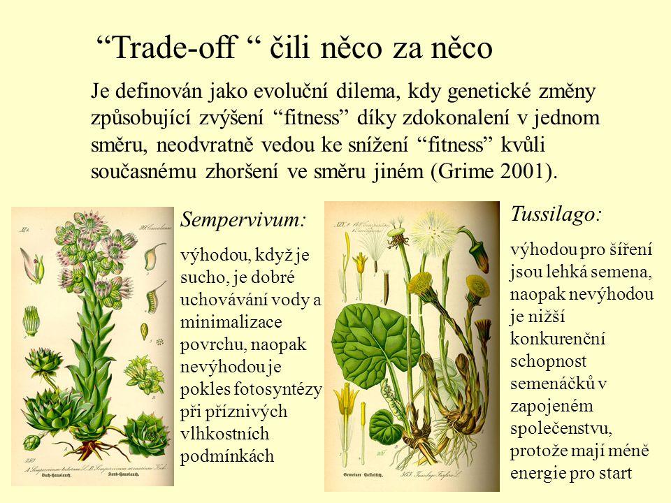 Pedicularis - husté chlupy v květenství chrání před mrazem, ale jsou zbytečnou investicí v teplejších podmínkách Entada - obrovská velikost semen pomáhá díky počáteční energii překlenout nízkou světelnou intenzitu v lesním podrostu, ale brání šíření na větší vzdálenosti