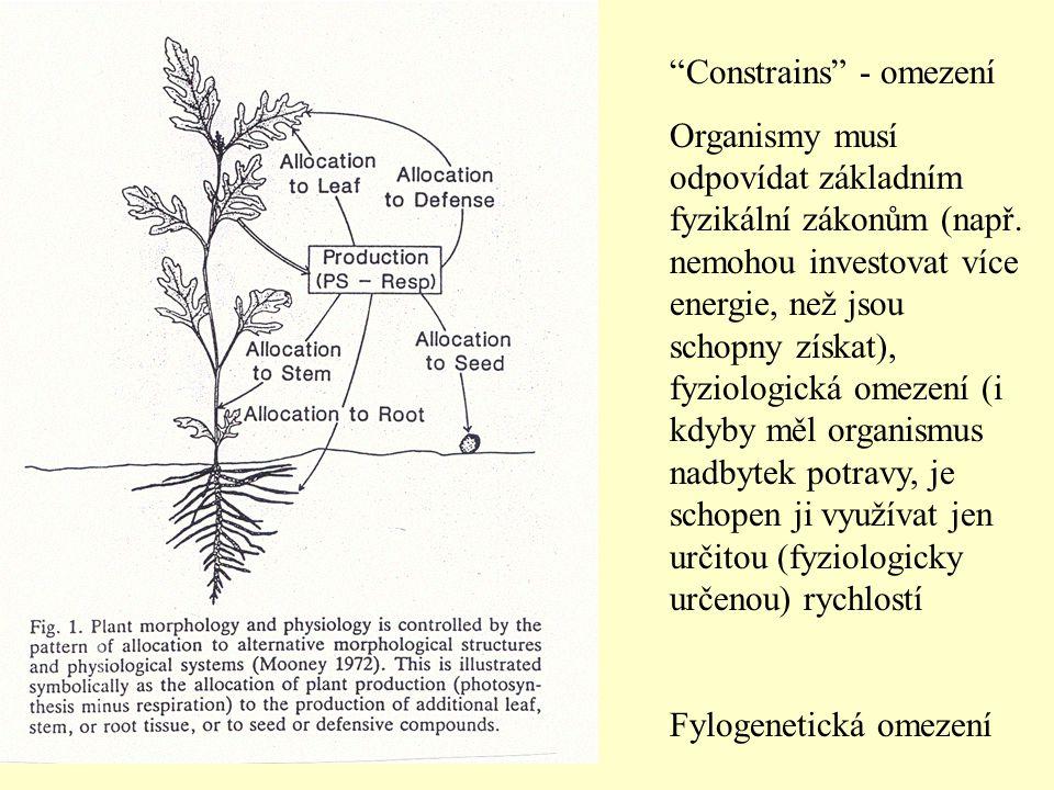 """""""Constrains"""" - omezení Organismy musí odpovídat základním fyzikální zákonům (např. nemohou investovat více energie, než jsou schopny získat), fyziolog"""