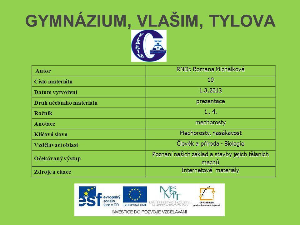 GYMNÁZIUM, VLAŠIM, TYLOVA Autor RNDr. Romana Michálková Číslo materiálu10 Datum vytvoření 1.