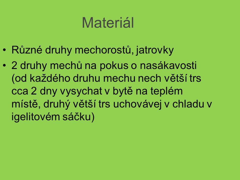 Úkoly: 1.Pozoruj, zakresli a porovnej mezi sebou různé druhy mechorostů ( porovnej vzhled a stavbu mechového polštáře a pod mikroskopem lístky, štěty a tobolky) 2.