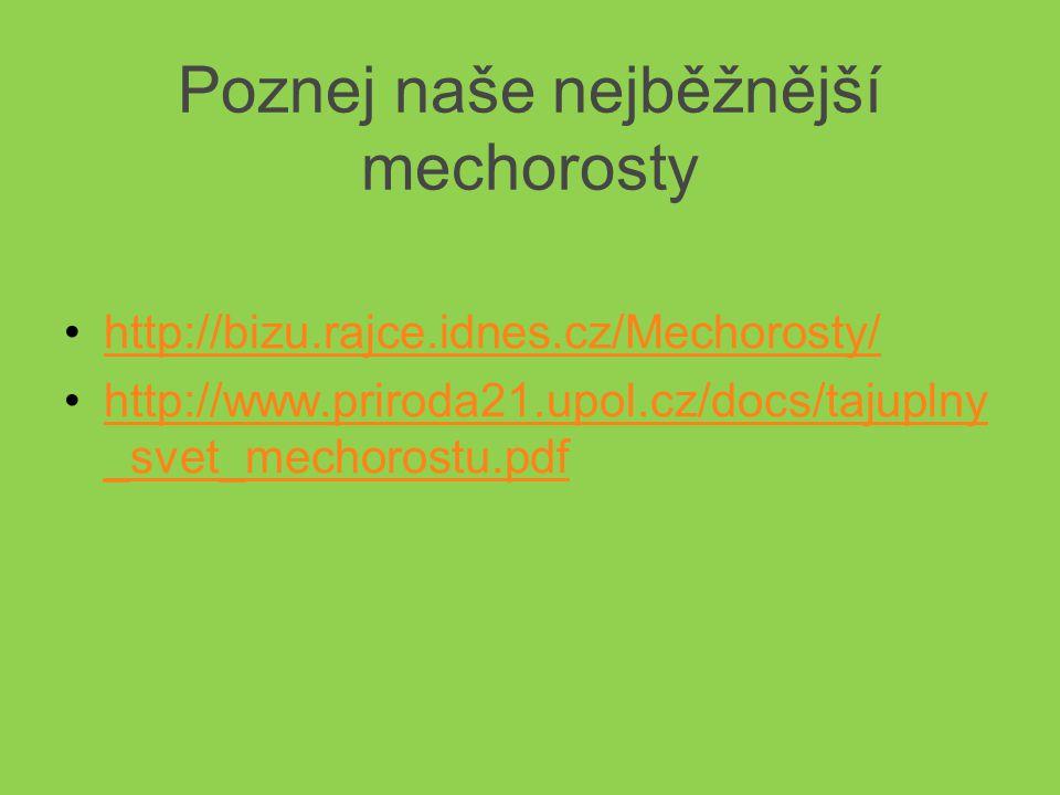 Poznej naše nejběžnější mechorosty http://bizu.rajce.idnes.cz/Mechorosty/ http://www.priroda21.upol.cz/docs/tajuplny _svet_mechorostu.pdfhttp://www.priroda21.upol.cz/docs/tajuplny _svet_mechorostu.pdf