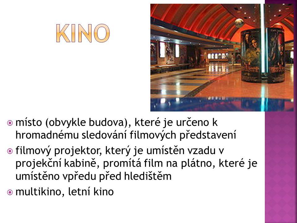  galerie/muzeum umění  místo pro výstavy uměleckých děl, obvykle výtvarného umění - jsou v něm vystavovány například obrazy, sochy, fotografie, ilustrace a objekty užitého umění  Národní galerie v Praze spravuje největší sbírku výtvarného umění v Česku