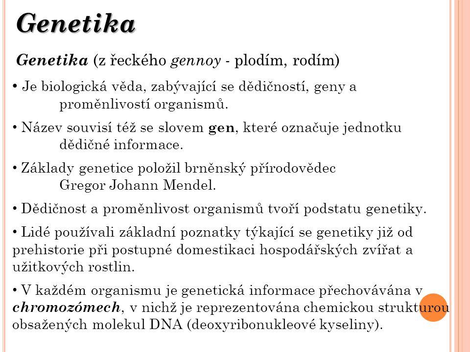 Genetika Genetika (z řeckého gennoy - plodím, rodím) Je biologická věda, zabývající se dědičností, geny a proměnlivostí organismů. Název souvisí též s