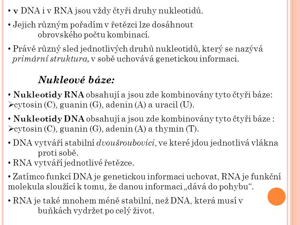 v DNA i v RNA jsou vždy čtyři druhy nukleotidů. Jejich různým pořadím v řetězci lze dosáhnout obrovského počtu kombinací. Právě různý sled jednotlivýc