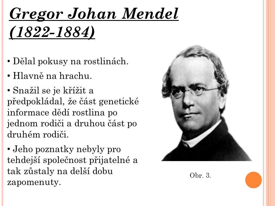 Gregor Johan Mendel (1822-1884) Dělal pokusy na rostlinách. Hlavně na hrachu. Snažil se je křížit a předpokládal, že část genetické informace dědí ros