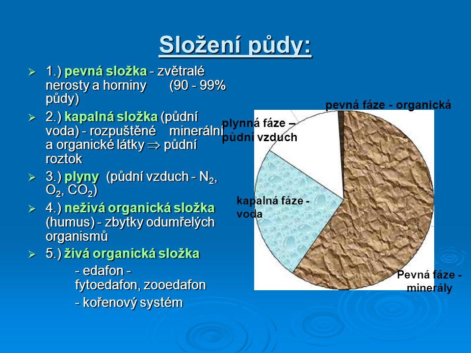 Složení půdy:  1.) pevná složka - zvětralé nerosty a horniny (90 - 99% půdy)  2.) kapalná složka (půdní voda) - rozpuštěné minerální a organické lá