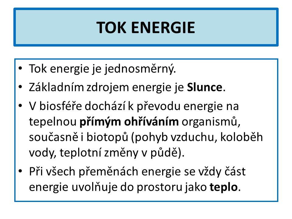 TOK ENERGIE Tok energie je jednosměrný. Základním zdrojem energie je Slunce.