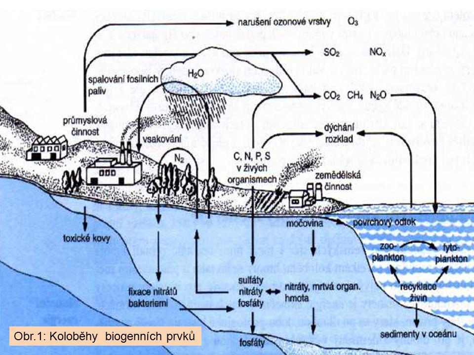Obr.1: Koloběhy biogenních prvků
