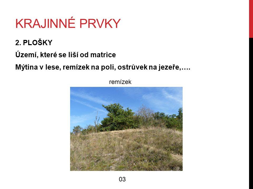 KRAJINNÉ PRVKY 2.