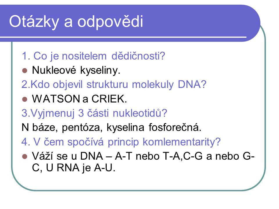 Otázky a odpovědi 1. Co je nositelem dědičnosti. Nukleové kyseliny.