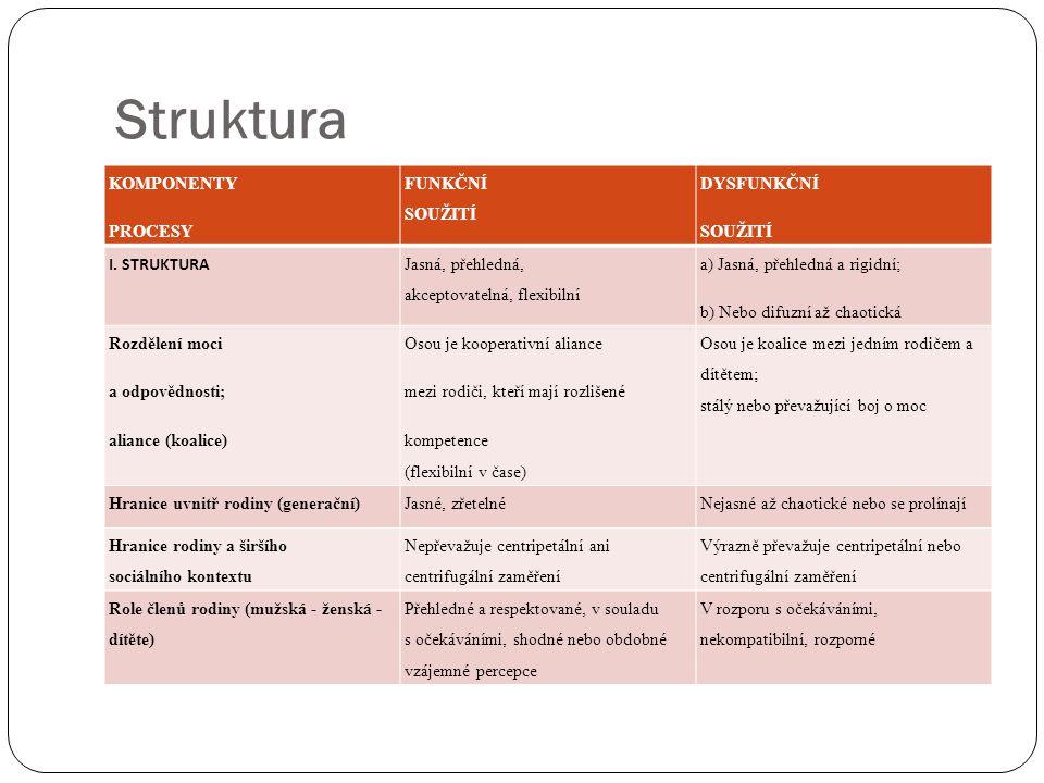 Struktura KOMPONENTY PROCESY FUNKČNÍ SOUŽITÍ DYSFUNKČNÍ SOUŽITÍ I. STRUKTURA Jasná, přehledná, akceptovatelná, flexibilní a) Jasná, přehledná a rigidn