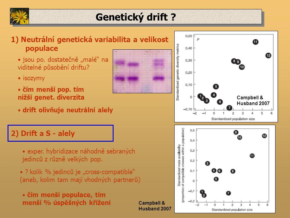 Genetický drift . 1) Neutrální genetická variabilita a velikost populace jsou po.