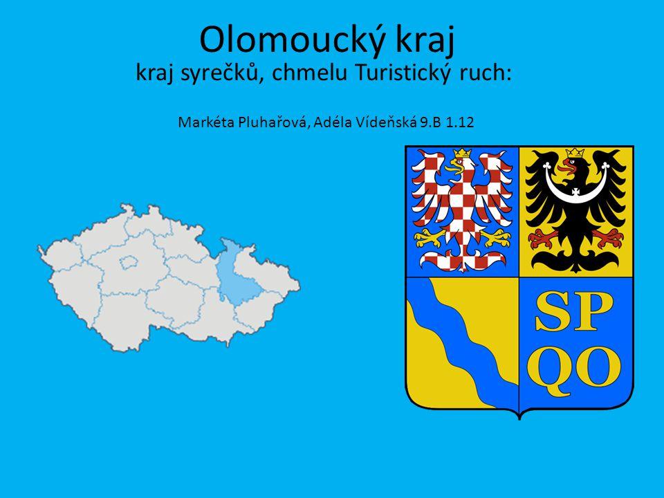 Markéta Pluhařová, Adéla Vídeňská 9.B 1.12 Olomoucký kraj