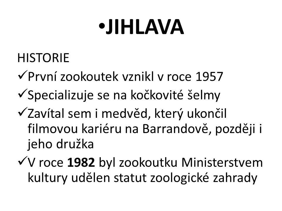 JIHLAVA HISTORIE První zookoutek vznikl v roce 1957 Specializuje se na kočkovité šelmy Zavítal sem i medvěd, který ukončil filmovou kariéru na Barrandově, později i jeho družka V roce 1982 byl zookoutku Ministerstvem kultury udělen statut zoologické zahrady