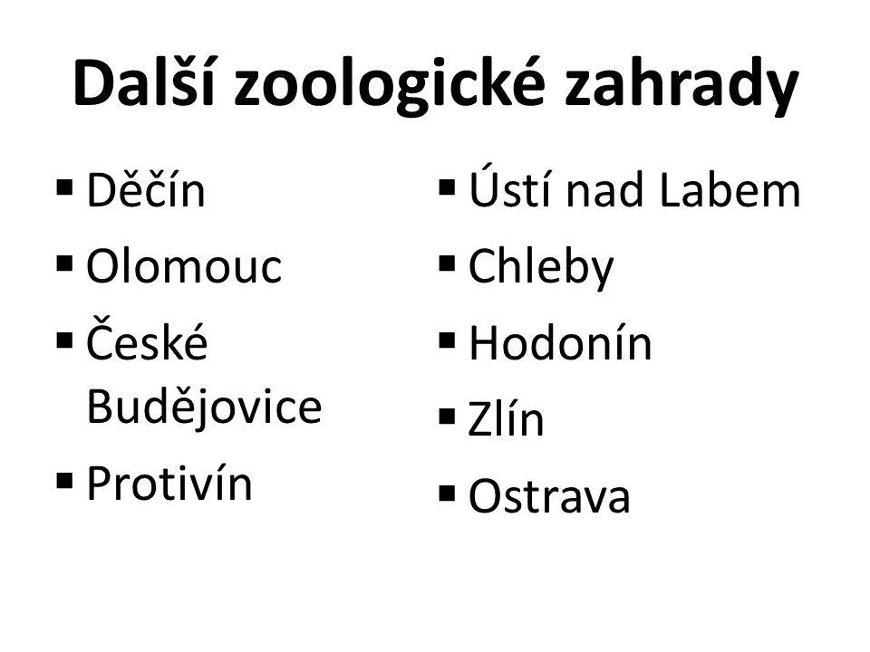 Další zoologické zahrady  Děčín  Olomouc  České Budějovice  Protivín  Ústí nad Labem  Chleby  Hodonín  Zlín  Ostrava