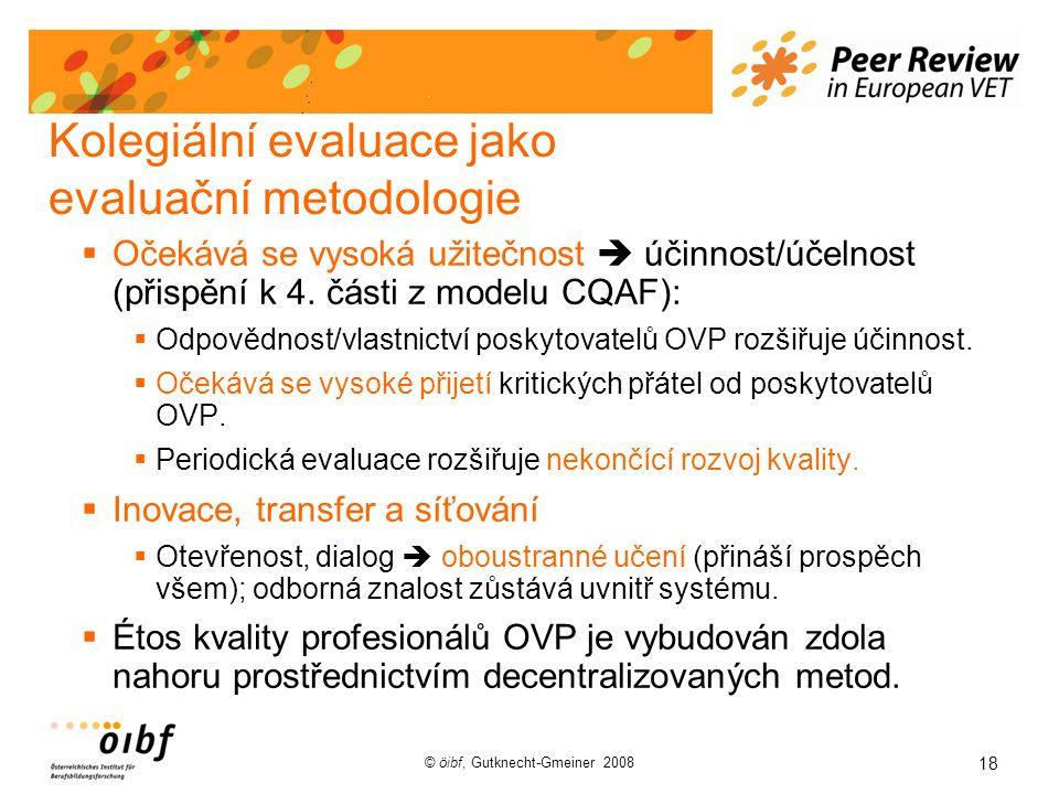 18 © öibf, Gutknecht-Gmeiner 2008 Kolegiální evaluace jako evaluační metodologie  Očekává se vysoká užitečnost  účinnost/účelnost (přispění k 4.