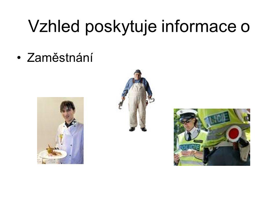 Vzhled poskytuje informace o Zaměstnání