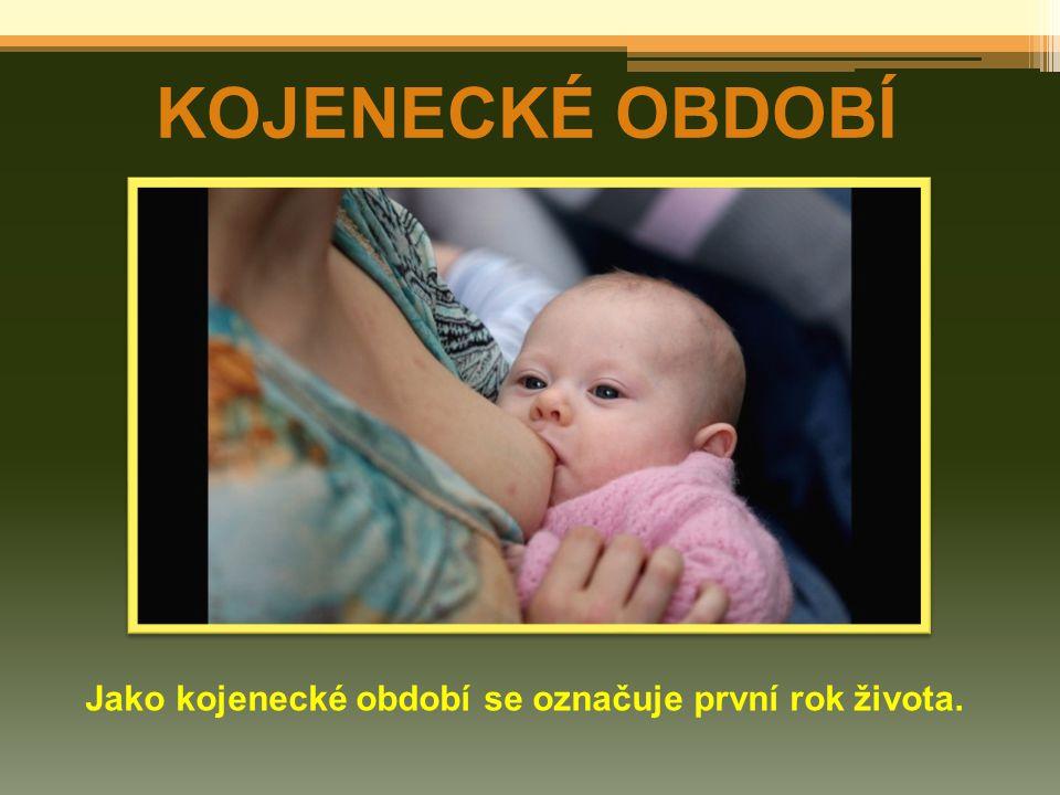 KOJENECKÉ OBDOBÍ Jako kojenecké období se označuje první rok života.