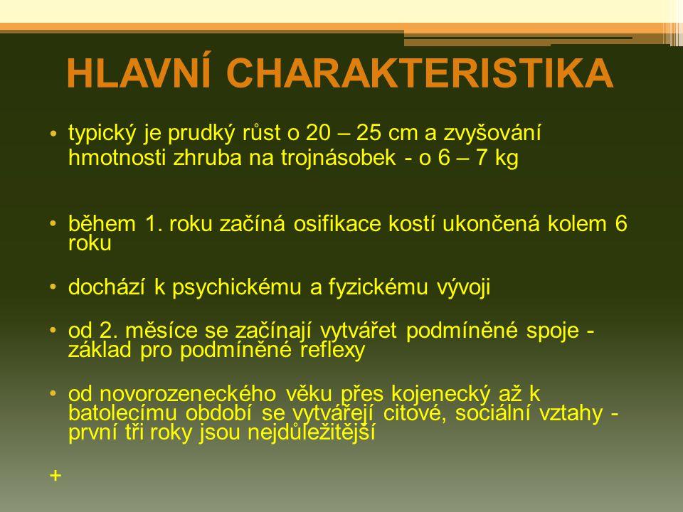 HLAVNÍ CHARAKTERISTIKA typický je prudký růst o 20 – 25 cm a zvyšování hmotnosti zhruba na trojnásobek - o 6 – 7 kg během 1. roku začíná osifikace kos