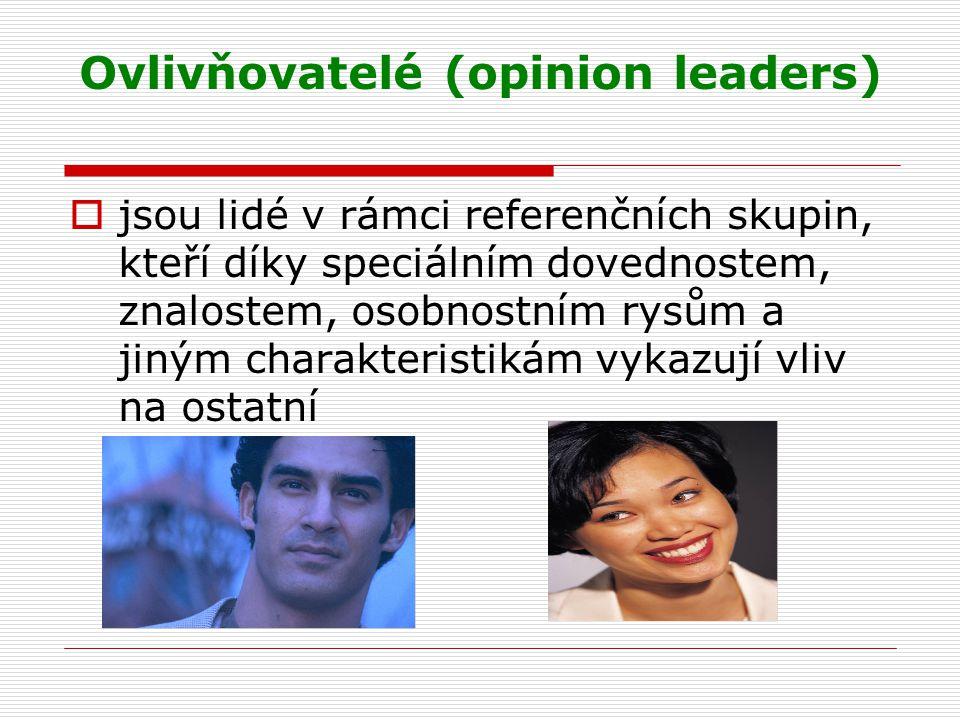 Ovlivňovatelé (opinion leaders)  jsou lidé v rámci referenčních skupin, kteří díky speciálním dovednostem, znalostem, osobnostním rysům a jiným charakteristikám vykazují vliv na ostatní