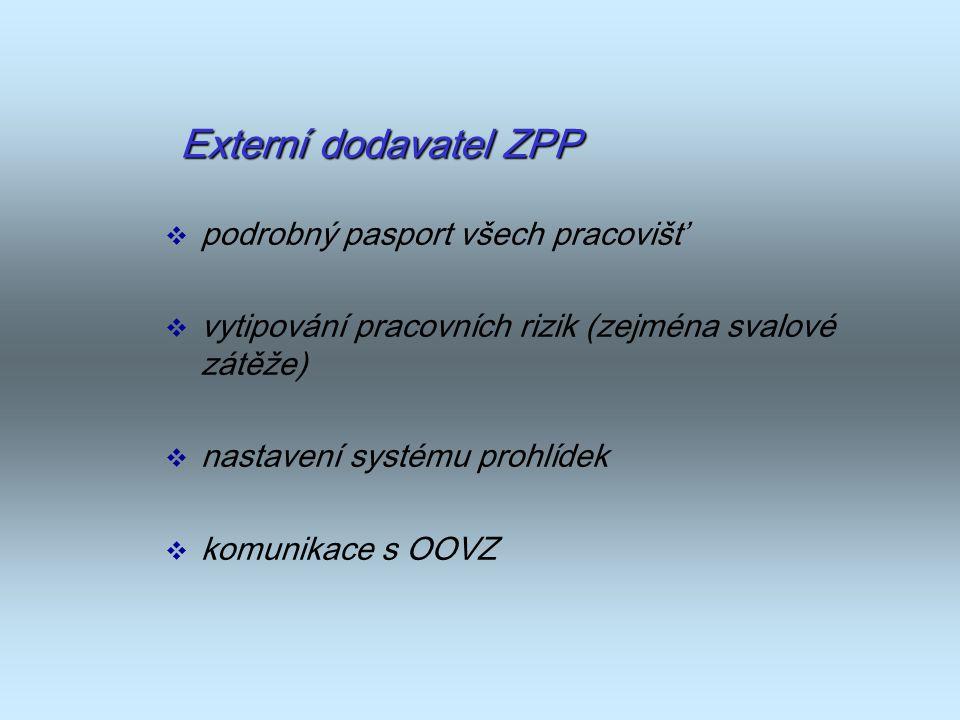 Externí dodavatel ZPP  podrobný pasport všech pracovišť  vytipování pracovních rizik (zejména svalové zátěže)  nastavení systému prohlídek  komuni