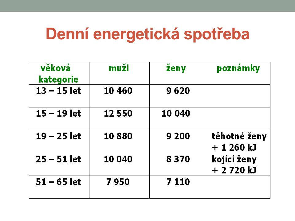 Denní energetická spotřeba