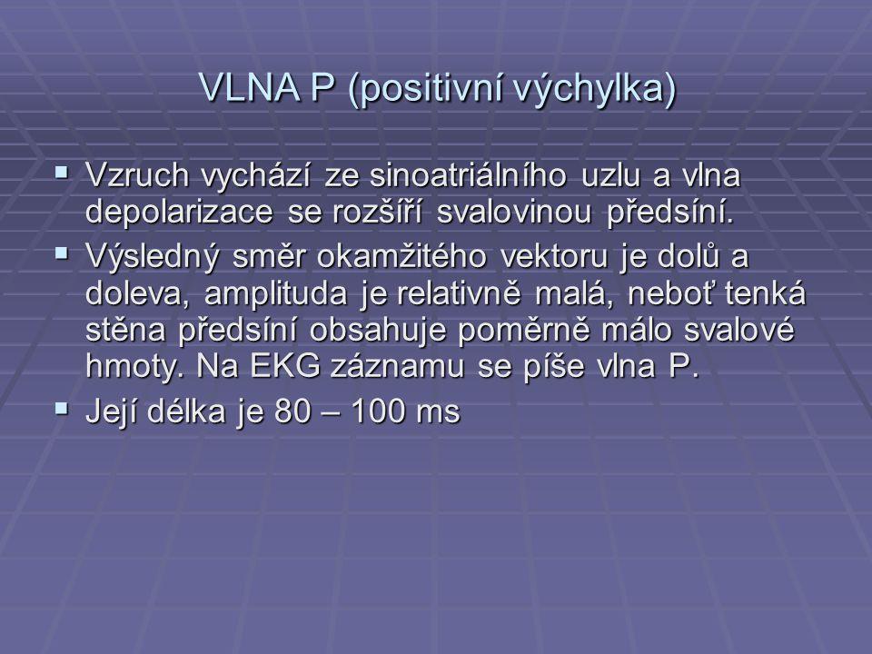VLNA P (positivní výchylka)  Vzruch vychází ze sinoatriálního uzlu a vlna depolarizace se rozšíří svalovinou předsíní.  Výsledný směr okamžitého vek